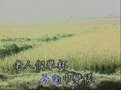 梅花泪:本地歌简谱图片
