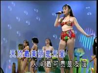 十二大泳装美女歌曲 朋友情