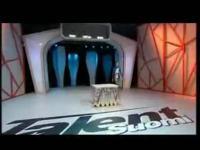 美女柔术视频之tuoroushu