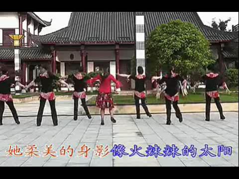 广场舞蹈醉月亮视频播放