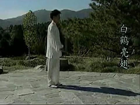 太极拳24式_视频在线观看-爱奇艺搜索