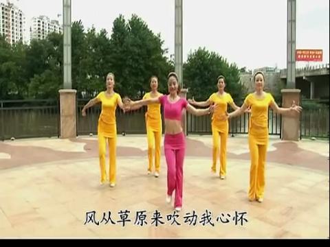 学跳舞视频广场舞我从草原来 丽萍广场舞