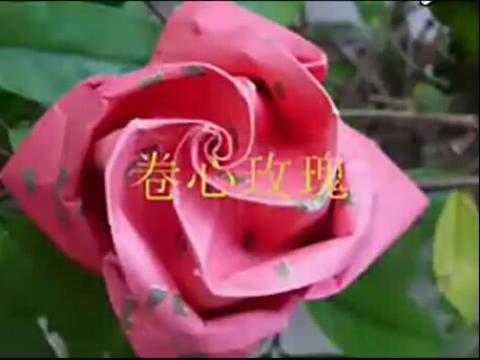 玫瑰花的折法 卷心玫瑰花折纸