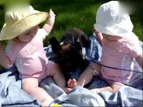 【时光小可爱】双胞胎与狗狗的幸福生活