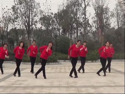 河南郑州平凡广场舞 少女的心