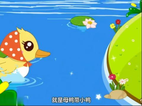 兔小贝儿歌 母鸭带小鸭