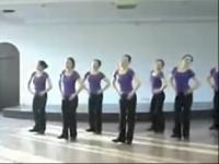 广场舞 紫蝶踏歌广场舞