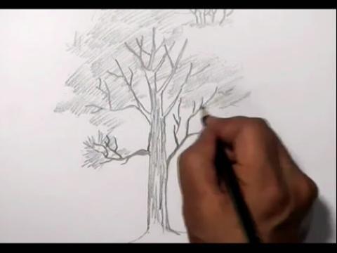 3d立体画铅笔画教程龙