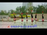 舞美久广场舞 视频简介:广场舞