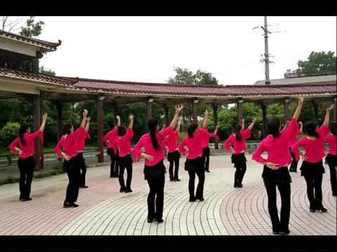 百合广场舞 百合广场舞