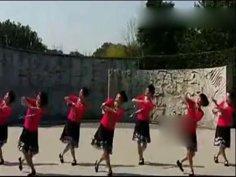 2014精品广场舞 少女的心
