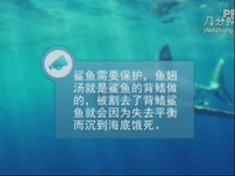 简笔画大全系列 简笔画动物篇之凶狠的鲨鱼