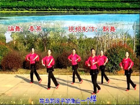 刘春英广场舞 月亮湖畔(正面演示)